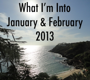 What I'm Into January February 2013